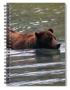 Wading Brown Bear Spiral Notebook