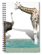 Wading Pool Spiral Notebook