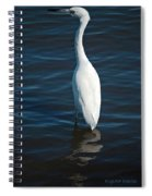 Wading Reflections Spiral Notebook