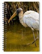 Wading Wood Stork Spiral Notebook
