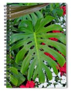 Waikiki Split Leaf Spiral Notebook