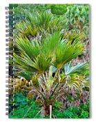 Waimea Palm Study 2 Spiral Notebook
