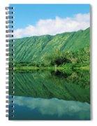 Waipio Valley Stream Spiral Notebook