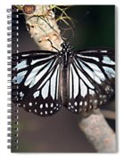 Waiting --- Rice Paper Butterfly Spiral Notebook
