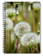 Waiting For A Spring Breeze Spiral Notebook