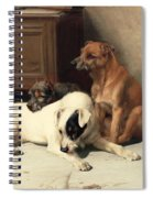 Waiting For Master Spiral Notebook