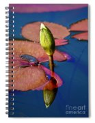 Waiting For Spring Spiral Notebook