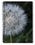 Waiting For The Breeze Spiral Notebook