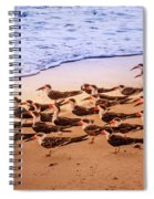 Waiting For The Wave Spiral Notebook