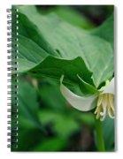 Wakerobin Spiral Notebook