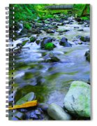 Walk Bridge Over Moffit Creek Spiral Notebook