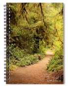 Walk Into The Forest Spiral Notebook