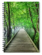 Walk Into The Mist Spiral Notebook