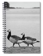 Walk On The Beach. Barnacle Goose Spiral Notebook