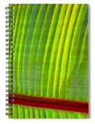 Walk The Line Spiral Notebook