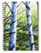 Walk To The Lake Spiral Notebook