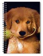 Walkies...pleeease - Paint Spiral Notebook