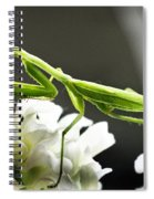 Walkin Tall On Silk Spiral Notebook