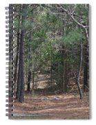 Walking In The Pine Forest Spiral Notebook
