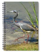 Walking On The Edge Spiral Notebook