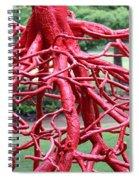 Walking Roots Sculpture Spiral Notebook