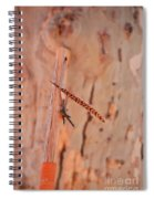 Walking Stick And Pheasant Feather Spiral Notebook