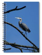 Walking The High Branch Spiral Notebook