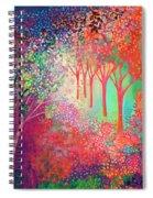 Walking Toward The Light Spiral Notebook