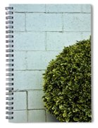 Wall Art Spiral Notebook
