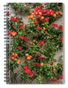 Wall Of Roses Spiral Notebook