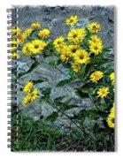 Wallflower Ain't So Bad Spiral Notebook