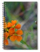 Wallflower Wildflower Spiral Notebook