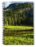 Wallowas - No. 8 Spiral Notebook