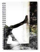 Walls Walks Spiral Notebook