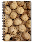 Walnuts Spiral Notebook