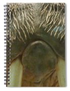 Walrus Whiskers Spiral Notebook