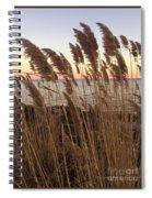 Warm Breeze Spiral Notebook