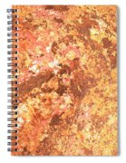 Warm Colors Natural Canvas 2 Spiral Notebook