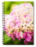 Warm Light Spiral Notebook