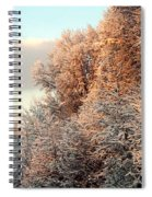 Warm Light Snow Spiral Notebook