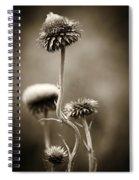 Warm Thistle Spiral Notebook