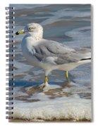 Warm Water Wading Spiral Notebook