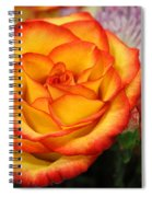 Warmth On A Winter's Day Spiral Notebook