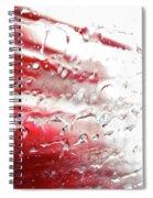 Wash Spiral Notebook