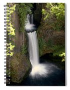 Washington Waterfall Spiral Notebook