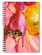 Wasp And Flower Spiral Notebook