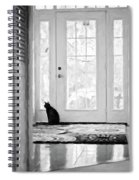 Watch Cat Spiral Notebook