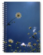 Watching The Day Float By Spiral Notebook