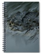 Wild Florida, Watching You Spiral Notebook
