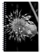 Wate Awens Spiral Notebook